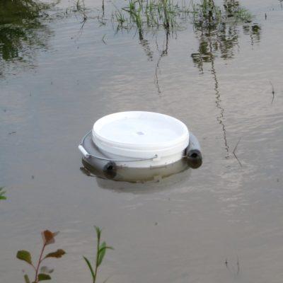 Eimerreuse für tiefere Gewässerbereiche zur Bestandsaufnahme von Amphibien
