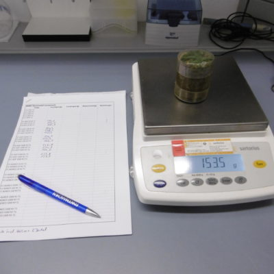 Partial sample from a TME for further processing in the laboratory
