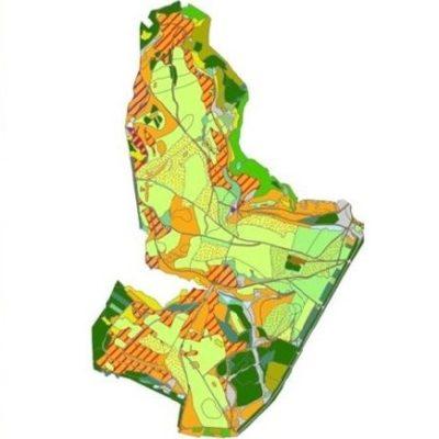 Simulation von Offenland und Gehölzen auf der Dreiborner Hochfläche