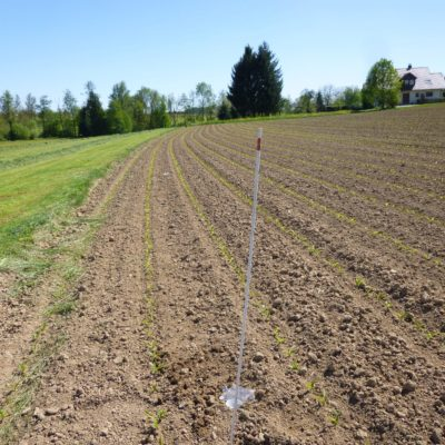Pitfall trap on freshly sown field poles for marking