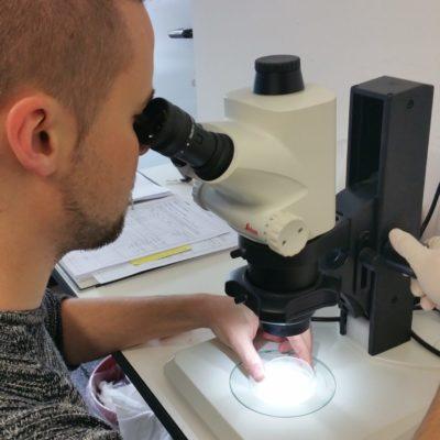 Monitoring der Versuchstiere - in einem Toxtest